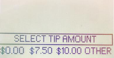 EMV-Tip Amount